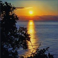 солнце вставало над морем... :: Ирэна Мазакина