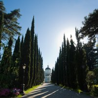 Дорога к храму :: Василий Каштанюк