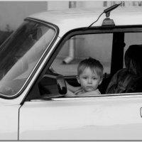 Садись, подвезу... :: Андрей Lyz