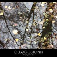 Осень... :: OLEG GOSTONN