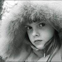 незнакомка :: Александр Сергеев