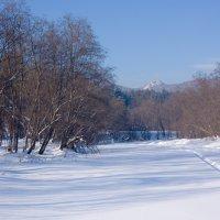 Зима художница рисует полотно :: Юрий .