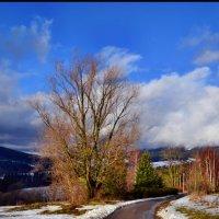 Уходящая зима :: tamara *****
