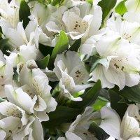 цветы :: Ирина Абовьян