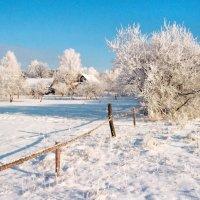 Алексей Брагин - зима :: Фотоконкурс Epson