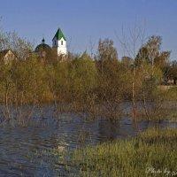 В разливе (у храма Николая Чудотворца) :: Евгений Лимонтов