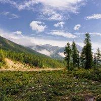 Лужок в горной долине :: Виктор Никитин