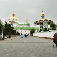 Свой путь :: Василий Каштанюк
