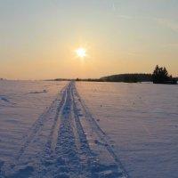 Зимняя :: Natusya _ya
