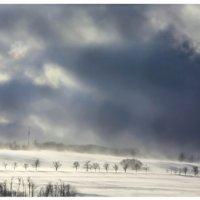 Буря :: Евгения C