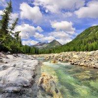 Река Шумак. :: Виктор Никитин
