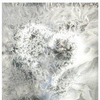 узор мороза на окне :: Евгения C