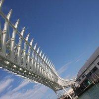 мост... :: Надежда Шемякина