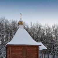 на закате :: Виктория Гринченко