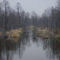 осень :: владимир урванцев