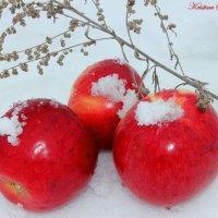 Зимние яблочки :: Кристина Шамсутдинова