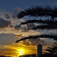 Закат над Сиднеем :: Евгений Лимонтов