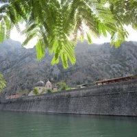 Вид на Старый Котор со стороны канала... :: Вера Павловская