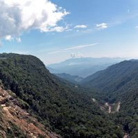 горный вьетнам...дорога в Далат :: Надежда Шемякина