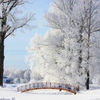 Зимняя сказка :: Кристина Шамсутдинова