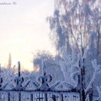 Зимнее утро :: Кристина Шамсутдинова