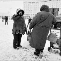 Снежная :: DR photopehota