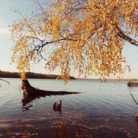 Река :: Тимка Шварц