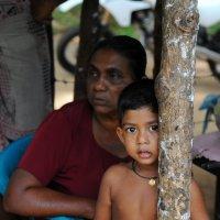 дети Шри Ланки :: Марина Брюховецкая