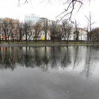 Чистые пруды :: Наталья Лесовая