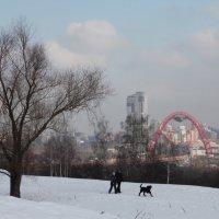 Живописный мост в лёгкой морозности. :: Наталья Иванова