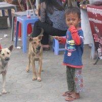 Cambodian boy :: Olga R