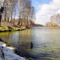 Времена года  холодная осень :: Сергей Коновавлов