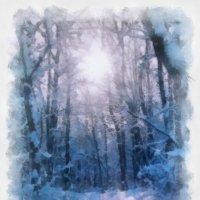 """тропинка в зимнем лесу """"акварель"""" :: владимир гребёнкин"""