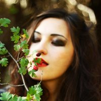 В лесу :: Наталия Рыбина