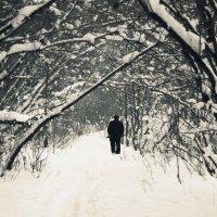 Одиночество :: Роберт Сайгафаров