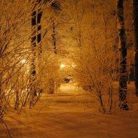 Зима :: Анастасия Румянцева