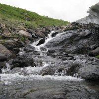 Чистая вода горного ручья :: Ирина Васильева