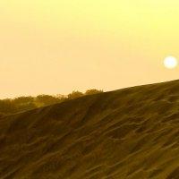 белое солнце пустыни :: человечик prikolist