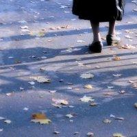Осень :: владимир гребёнкин