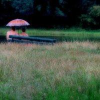 Дождь :: владимир гребёнкин
