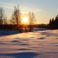 Закат за околицей :: Алексей Никитин