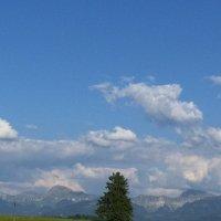 Oblaka :: Olga R