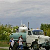 Как передвигаются деревья :: Евгений Гудименко