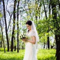 Красивая невеста :: Vadim Тимко
