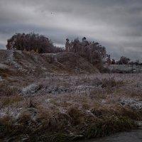 Преждевременные заморозки :: Владимир Макаров