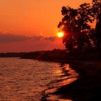 Закатное солнышко :: Василек photo