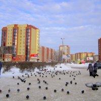 Потеплело  в Сибири . :: Мила Бовкун