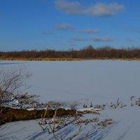 Озеро под снегом :: Вера Андреева