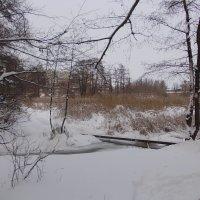 Зимний мост :: Викторина Срыбна