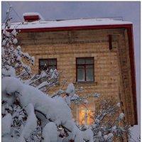 Окно с видом на рябину... :: Кай-8 (Ярослав) Забелин